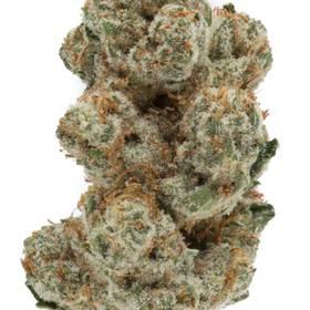 King Louis XIII Weed