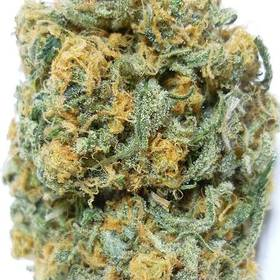 super blue dream where to buy