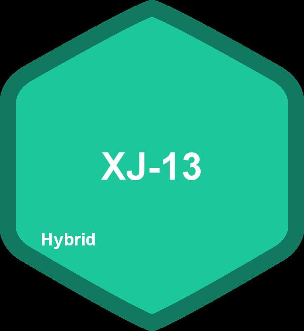 XJ-13